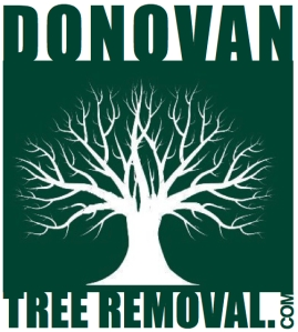 Donovan Tree Removal